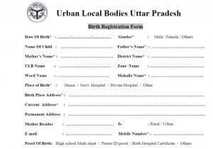 up-birth-certificate-registration-form-5-pdf