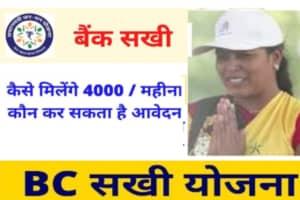 HP BC Sakhi Yojana