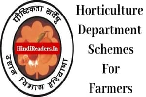 Horticulture Department Schemes Haryana