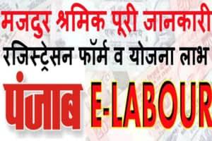 Punjab e-Labour Card