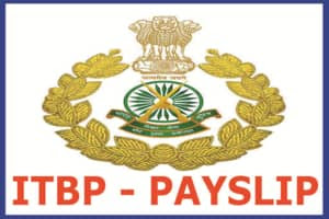 Himveer Connect ITBP PIS Monthly Pay Slip